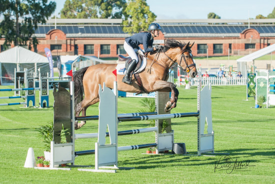 2018 State Show Jumping Championships